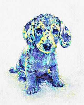 Puppy Digital Art - Blue Dapple Dachshund Puppy by Jane Schnetlage