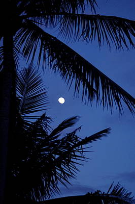 Photograph - Blue Dawn Moon by Lehua Pekelo-Stearns