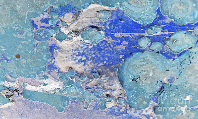 Photograph - Blue Dog Boo Abstract by Lee Craig