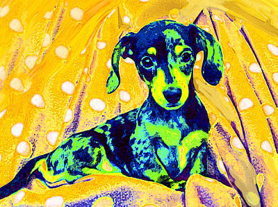 Puppy Digital Art - Blue Doxie by Jane Schnetlage