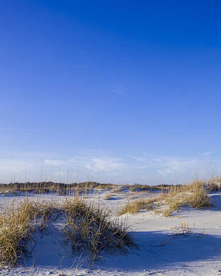 Photograph - Blue Dunes by Denis Lemay