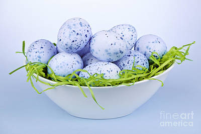Photograph - Blue Easter Eggs In Bowl by Elena Elisseeva