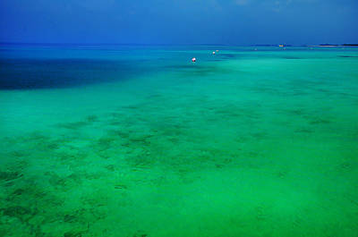 Blue Emerald. Peaceful Lagoon In Indian Ocean  Print by Jenny Rainbow