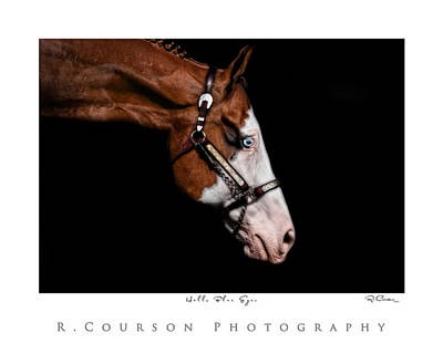 Photograph - Blue Eye by Ryan Courson