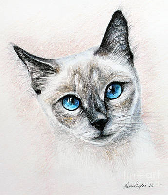 Drawing - Blue Eyes by Lena Auxier