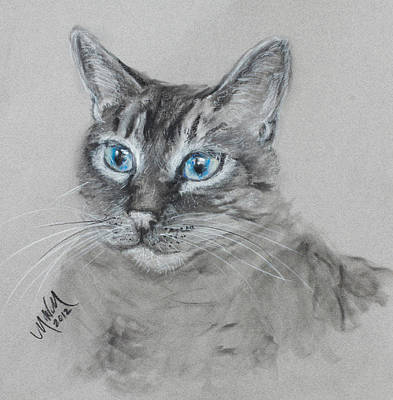 Drawing - Blue Eyes by Michelle Wolff