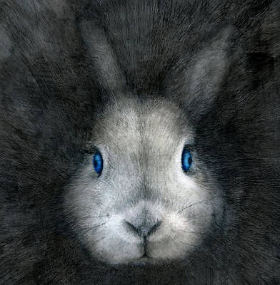 Drawing - Blue Eyes by Penny Collins