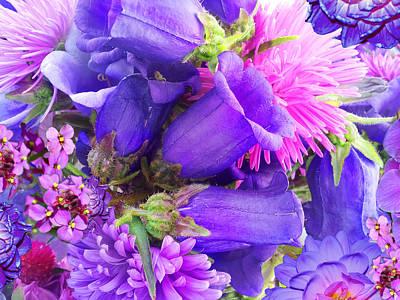 Alixandra Mullins Photograph - Blue Fairy Bells by Alixandra Mullins