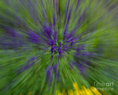 Photograph - Blue Floral Blur by Dale Nelson