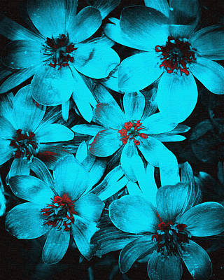Photograph - Blue Floral  by Susan  McMenamin