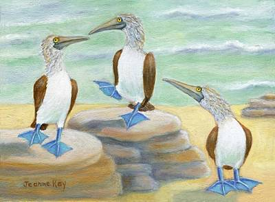 Painting - Blue-footed Boobies by Jeanne Kay Juhos