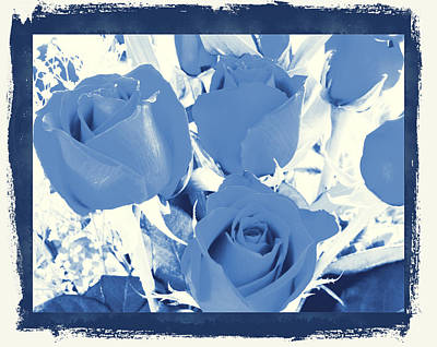Blue For You Roses Art Print