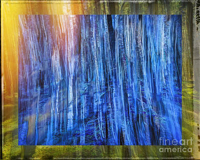 Photograph - Forest Of Blues by Edmund Nagele