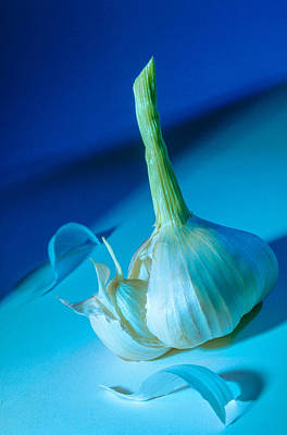 Photograph - Blue Garlic by Matthew Pace