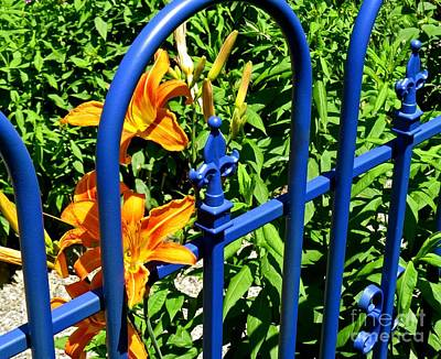 Photograph - Blue Gate by Nancy Patterson