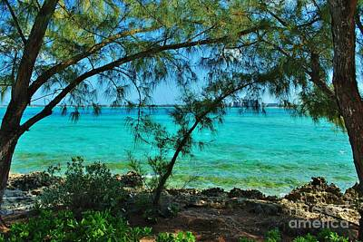 Photograph - Blue Green And Aqua by Bob Sample