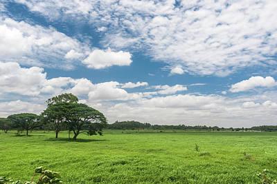 Bangalore Photograph - Blue Green Paradise by Arvind Manjunath Photography