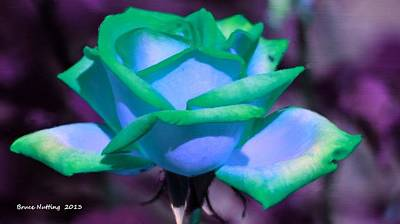 Blue Painting - Blue Green Rose by Bruce Nutting