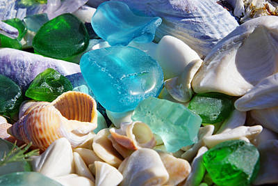 Blue Green Seaglass Shells Coastal Beach Art Print