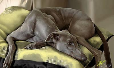 Rescued Greyhound Painting - Blue Grey by Ari Caer