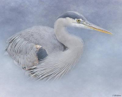 Photograph - Blue Heron Art - Creativity by Jordan Blackstone