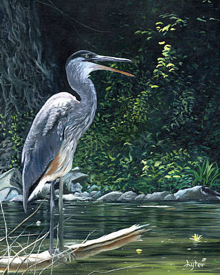 Waterfowl Painting - Blue Heron by Christopher Lyter