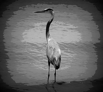 Blue Heron In Black And White Original by Laurie Pike