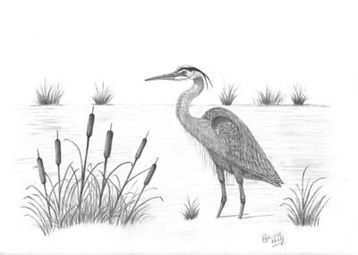 Drawing - Blue Heron by Patricia Hiltz