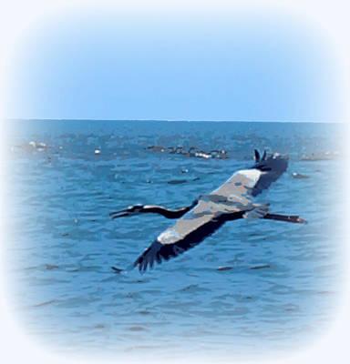 Blue Heron Soaring Original by Laurie Pike