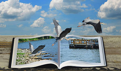 As Art Photograph - Blue Heron Storybook by Steven Michael