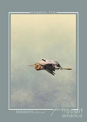 Photograph - Blue Heron Wildlife Christmas Cards by Jai Johnson