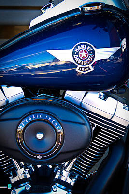 Photograph - Blue Hog by David Patterson