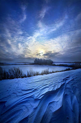 Red Leaves Snow Wall Art - Photograph - Blue Horizons by Phil Koch