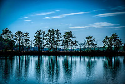 New Jersey Pine Barrens Photograph - Blue Hour by Louis Dallara
