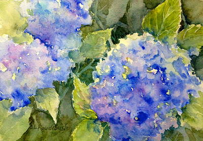Painting - Blue Hydrangea by Cynthia Roudebush