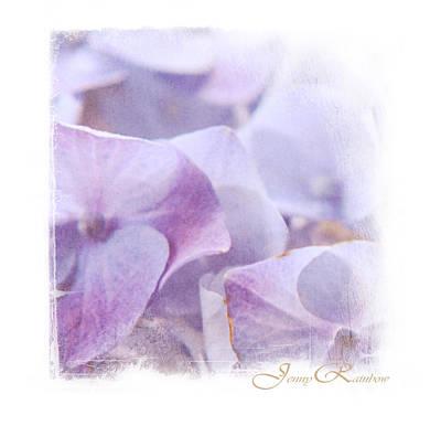 Photograph - Blue Hydrangea. Mini-square Idea For Interior by Jenny Rainbow