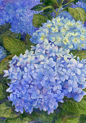 Hydrangea Watercolor Painting - Blue Hydrangeas by Leslie Fehling