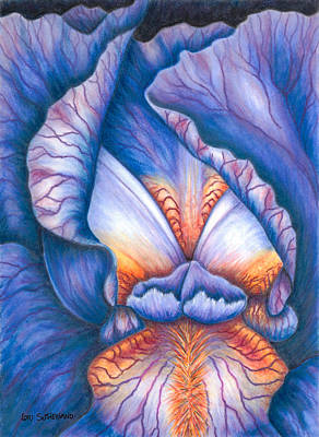 Painting - Blue Iris by Lori Sutherland