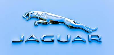 Blue Jaguar Art Print by Ronda Broatch