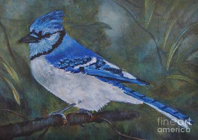 Painting - Blue Jay by Jana Baker