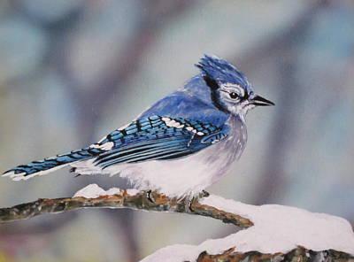 Blue Jay Original by Lillian  Bell
