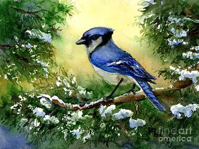Painting - Blue Jay  On Cedar by Virginia Potter