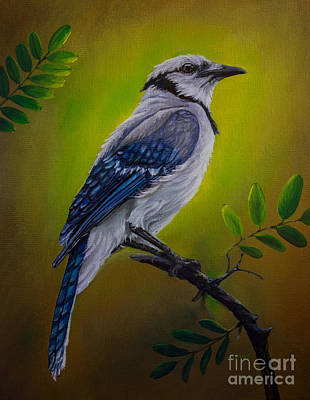 Bluejay Painting - Blue Jay Painting by Zina Stromberg