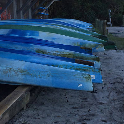 Photograph - Blue Kayaks by Patricia Januszkiewicz