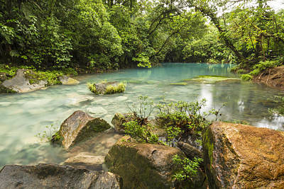 Tenorio Volcano National Park Photograph - Blue Lagoon And Orange Rock by Colin D Young