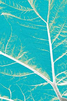 Mellow Yellow - Blue Leaf by Charles Don Thompson
