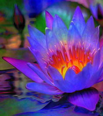 Lotus Leaves Painting - Blue Lotus by  Fli Art