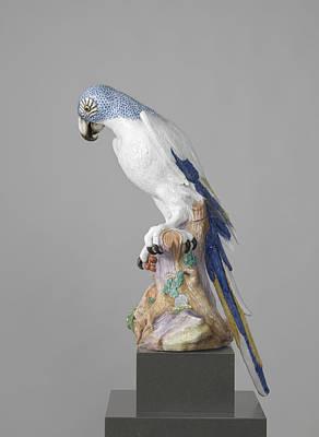 Macaw Drawing - Blue Macaw, Meissener Porzellan Manufaktur by Quint Lox
