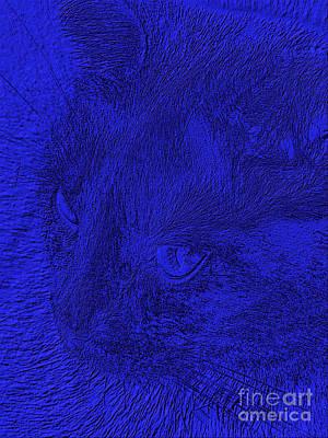 Digital Art - Blue Magnificence by Oksana Semenchenko