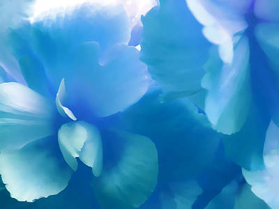 Blue Melody Begonia Floral Art Print by Jennie Marie Schell
